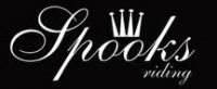 Logo Spooks