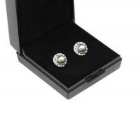 Boucles d'oreilles: Swarovski Crystal- Platin