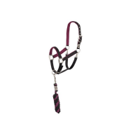 Anky : Licol + corde ( New )