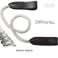 Chetak: Frontal Crystal Bright