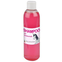 Shampoing framboises pour chevaux